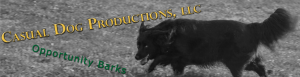 Casual Dog Productions banner