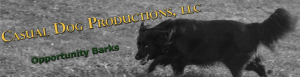 Casual Dog Productions, LLC banner