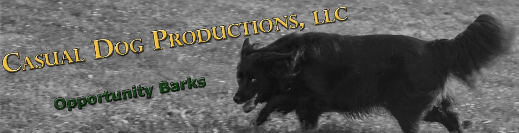 Casual Dog Productions, LLC