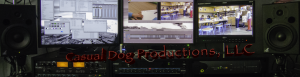 Casual Dog Productions Edit suite